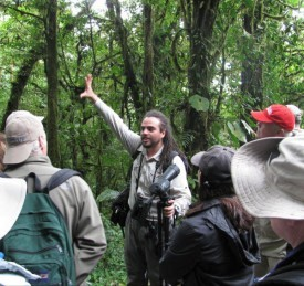 Tour guide Andreas points out the habitat of the quetzal